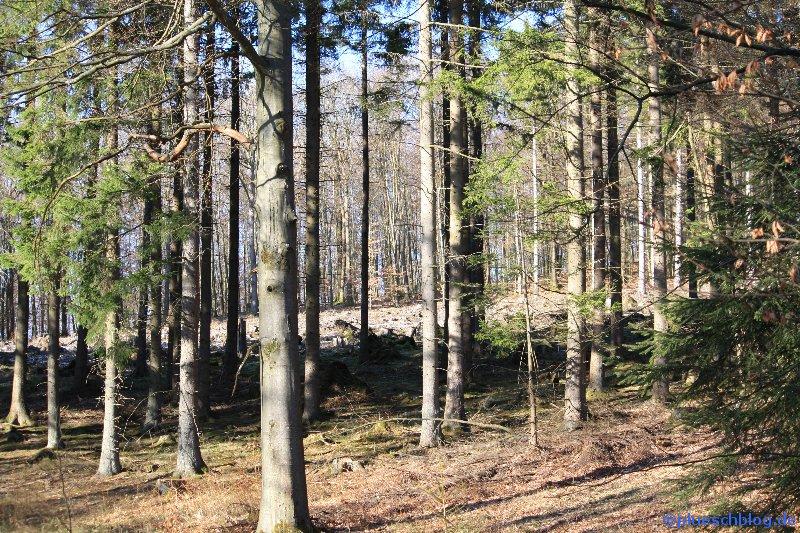 Breitenbach Talsperre 19