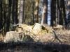 Breitenbach Talsperre 20