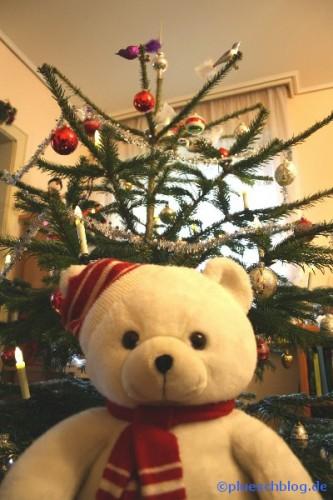 Bommel vor dem Weihnachtsbaum 1