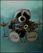 Nutwish - Snake Terrana on Drums
