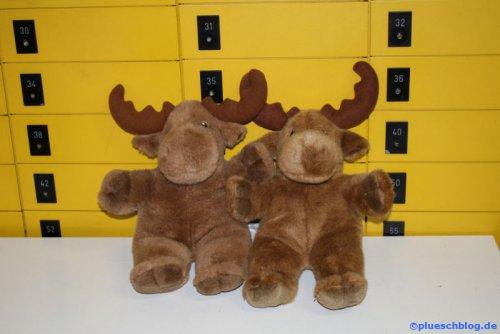 Post-Elk 03