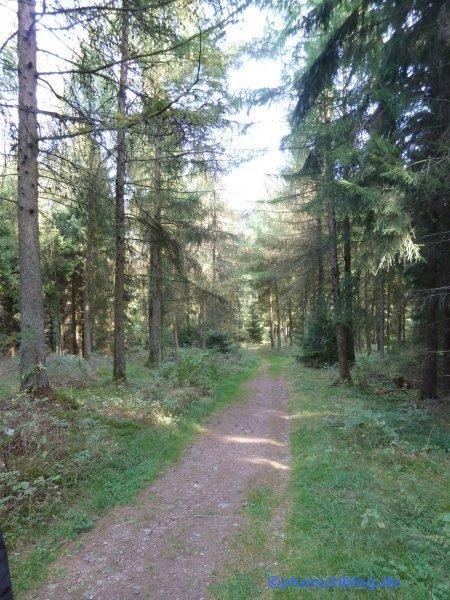 Gilbergskopf 54