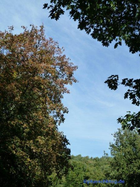 Oktober in Eiserfeld