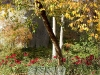 Herbst 15