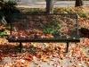 Herbst 05
