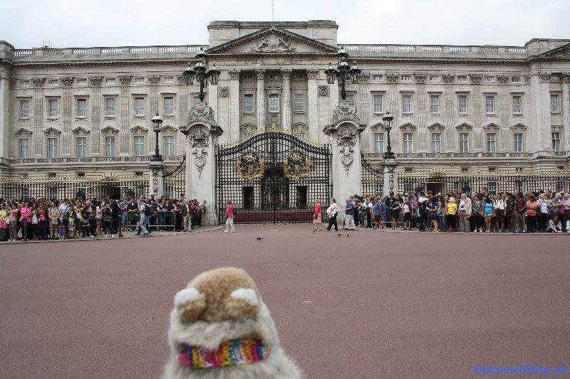 London 2012 016