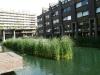 London 2012 065