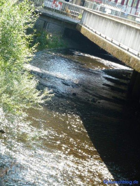 Siegplatte 12.08.2012 16
