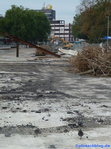 Siegplatte 23.09.2012 11