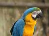 Vogelpark 12 22