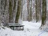 winterspaziergang_netphen-01