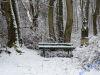 winterspaziergang_netphen-03
