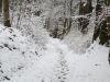 winterspaziergang_netphen-06