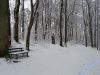 winterspaziergang_netphen-20