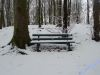 winterspaziergang_netphen-21