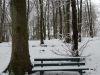 winterspaziergang_netphen-22