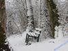 winterspaziergang_netphen-35