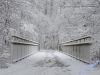 winterspaziergang_wilnsdorf-02