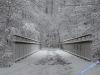 winterspaziergang_wilnsdorf-03