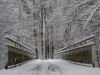 winterspaziergang_wilnsdorf-09