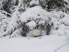 winterspaziergang_wilnsdorf-27
