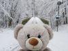 winterspaziergang_wilnsdorf-32