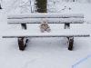 winterspaziergang_wilnsdorf-36