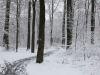 winterspaziergang_wilnsdorf-51