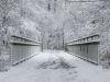 winterspaziergang_wilnsdorf-53