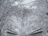 winterspaziergang_wilnsdorf-56