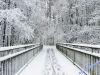 winterspaziergang_wilnsdorf-58