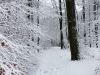 winterspaziergang_wilnsdorf-61