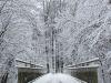 winterspaziergang_wilnsdorf-63