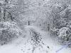 winterspaziergang_wilnsdorf-64