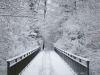 winterspaziergang_wilnsdorf-65