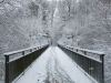 winterspaziergang_wilnsdorf-69