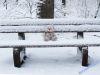 winterspaziergang_wilnsdorf-81