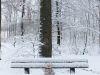 winterspaziergang_wilnsdorf-82