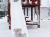 winterspaziergang_wilnsdorf-91