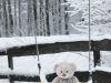 winterspaziergang_wilnsdorf-93