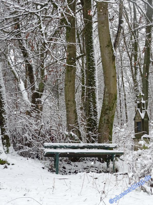 winterspaziergang_netphen-02