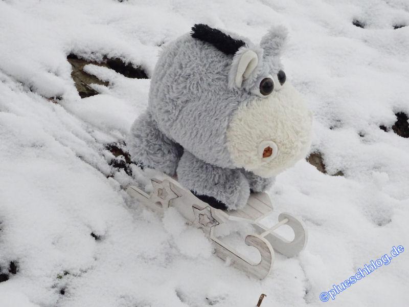 winterspaziergang_netphen-07