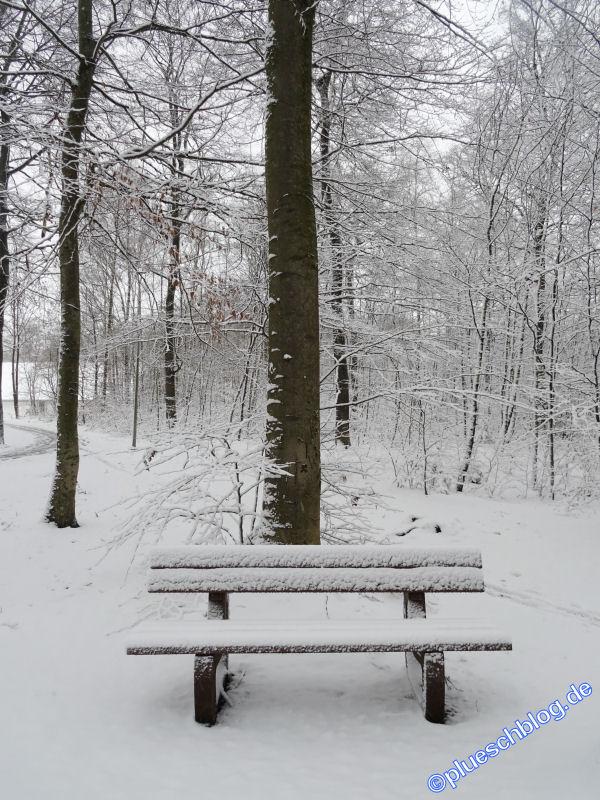 winterspaziergang_wilnsdorf-05