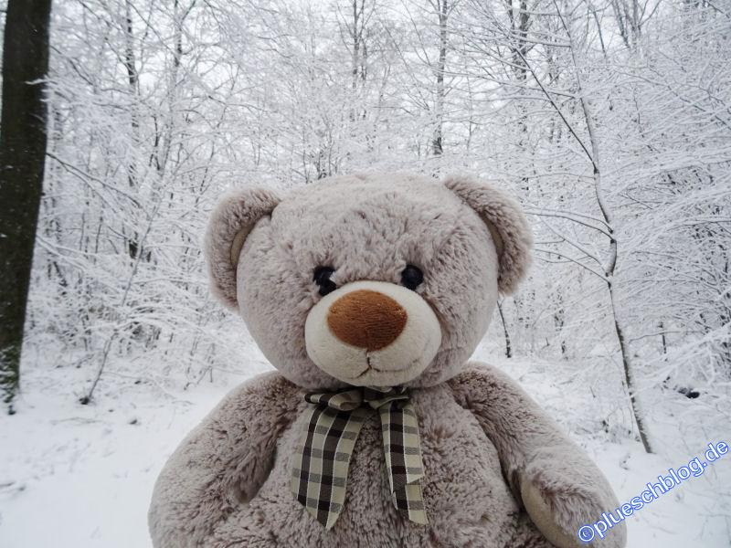 winterspaziergang_wilnsdorf-31
