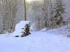 Winterspaziergang 04