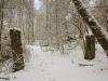 Winterspaziergang 20