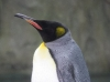 zoo-wuppertal-68