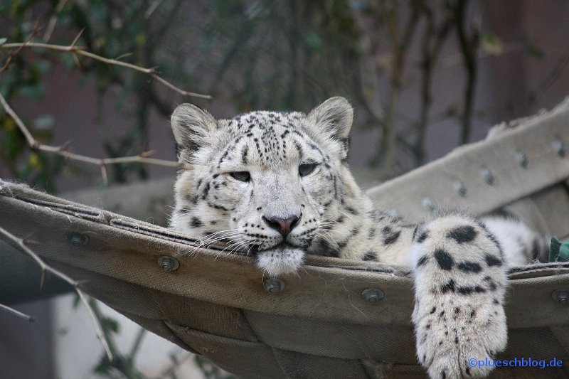 zoo-wuppertal-73